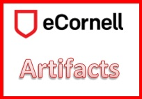 ecornell_artifacts